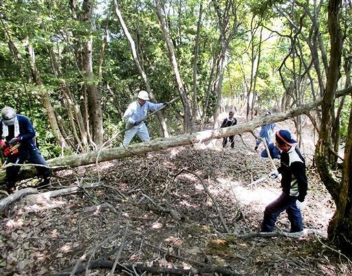石山城跡までの山道にある倒木を取り除く会員たち=5月下旬、福井県おおい町石山