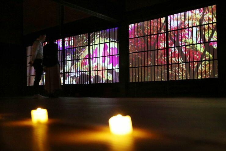 さまざまな光で彩られた笹川邸=9月26日、新潟市南区