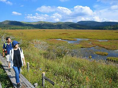 深まる秋色、八島ケ原湿原 「草紅葉」の季節に