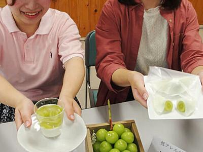 シャインマスカットの低アレルゲンスイーツ 須坂の農家や県立大生ら開発