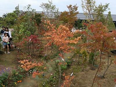 庭園で秋に浸って 三条・道の駅 10月14日までフェス