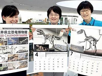 勝山の恐竜がカレンダーに 全身骨格も 福井・恐竜博物館