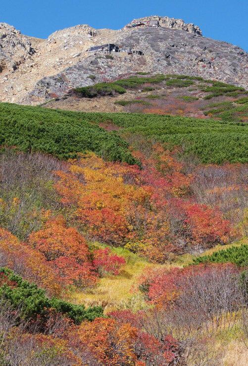 御嶽山の黒沢口登山道8合目周辺を彩る紅葉=9日午前9時47分、木曽町
