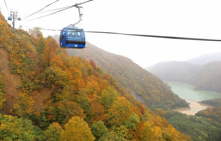 ドラゴンドラから見える紅葉の景色=24日、湯沢町