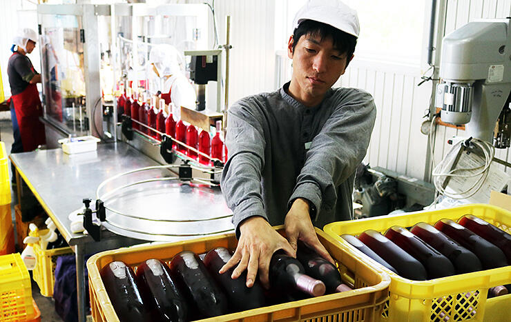 新酒の瓶詰め作業を行う従業員