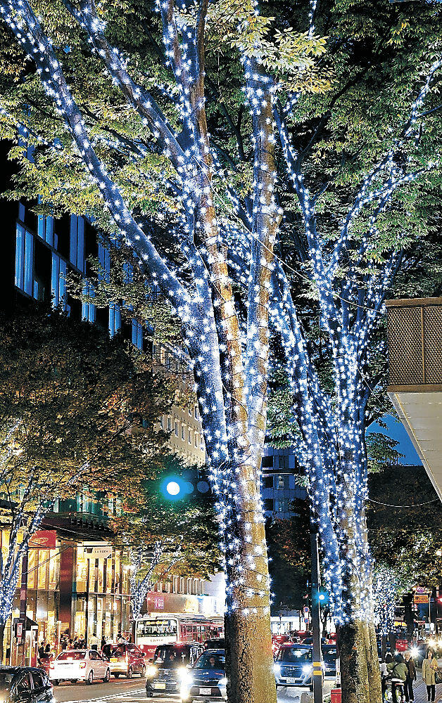 青白い光に彩られた街路樹=香林坊
