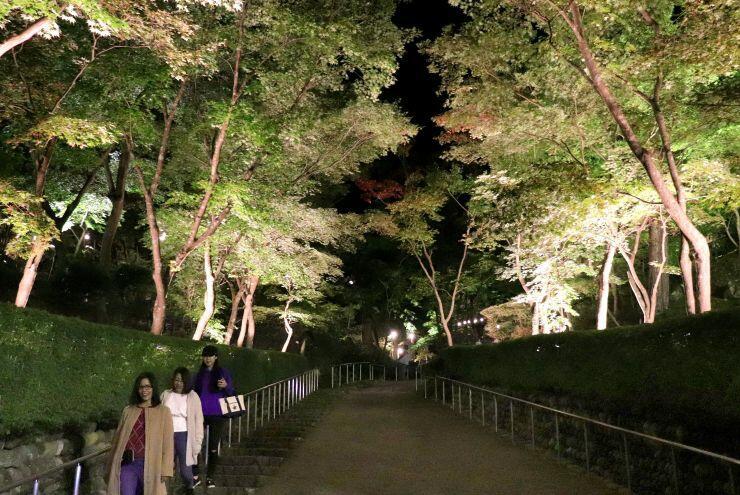 紅葉のライトアップが行われている松雲山荘=29日、柏崎市