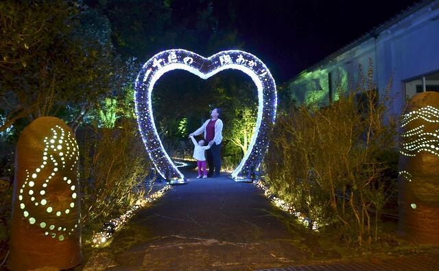 千個を超す陶あかりと約2万球のLEDで彩られた庭園=11月1日夜、福井県越前町の県陶芸館「幽石庭」