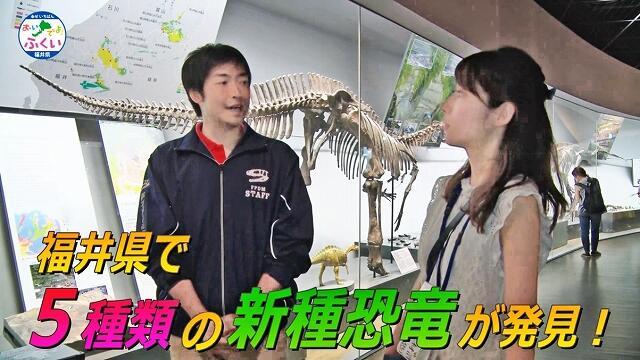 日本一をテーマに、福井県立恐竜博物館の魅力などを紹介している動画の一場面