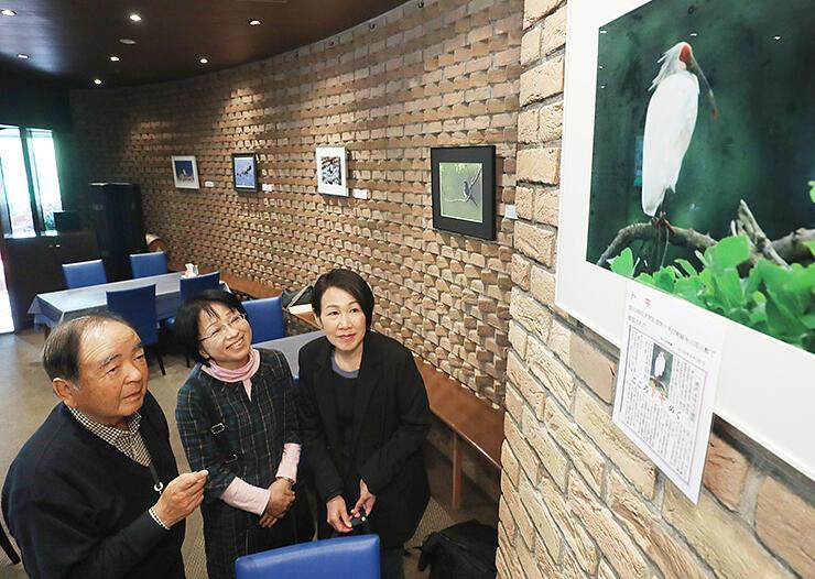 北日本新聞に掲載されたトキの写真について説明する酒井さん(左)