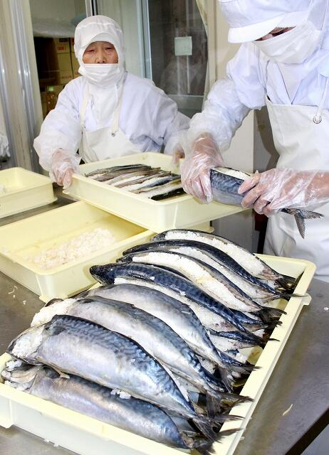 鯖の熟れ鮨しを仕込む加工グループのメンバー=11月7日、福井県勝山市北谷町北六呂師