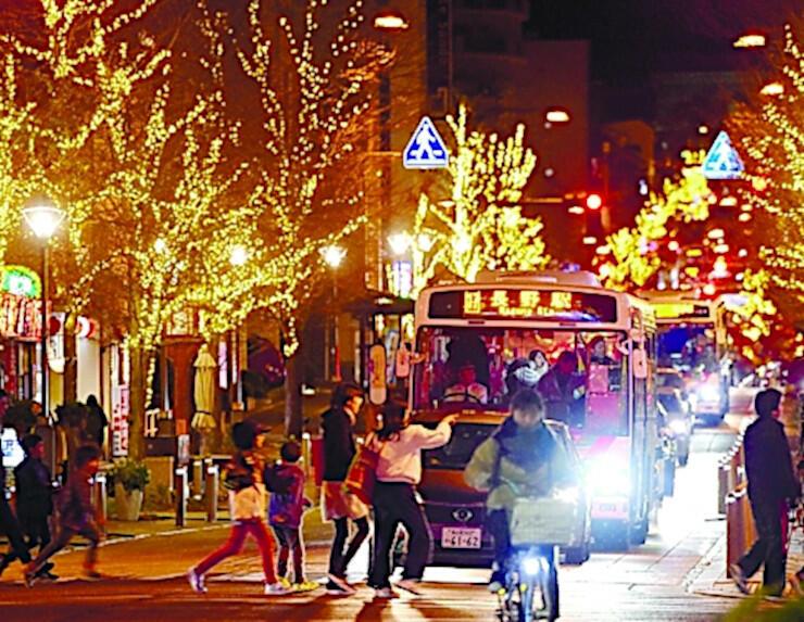中央通りの街路樹を彩るイルミネーション=昨年11月、長野市