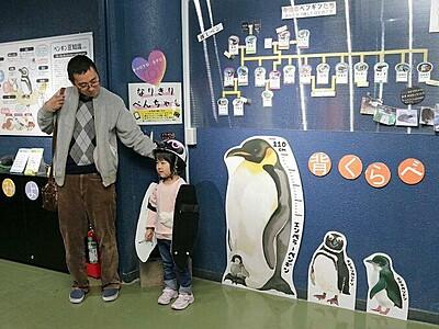 ペンギンになれるよ 寺泊水族館 解説コーナー人気