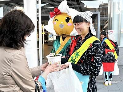 越廼の水仙、美しさ知って JR福井駅周辺で地元小中生らPR