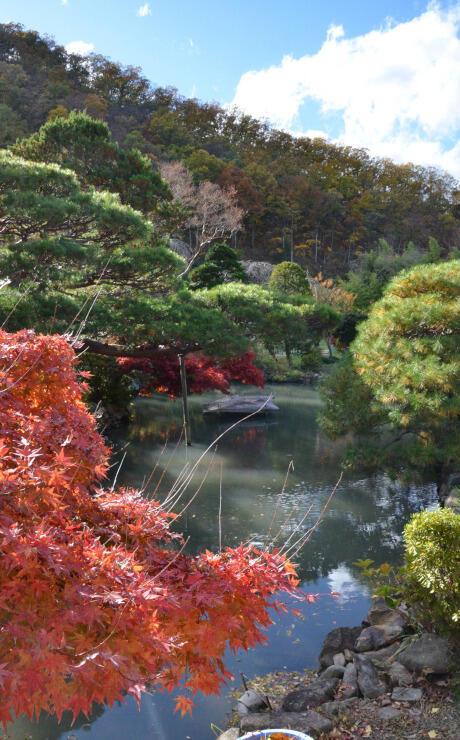 「泉水」と呼ばれる池がある長峯氏庭園=長野市