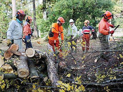 森林サポーターの会 前田墓所の整備に協力