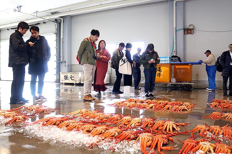 新湊漁港でベニズワイガニなどが並ぶ競り場を見学する参加者