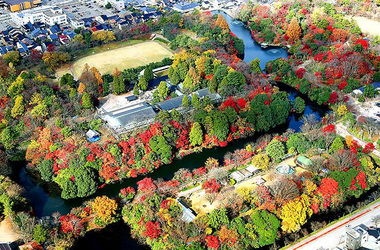 赤や黄色に色づいた木々が堀をきれいに縁取っている=高岡古城公園