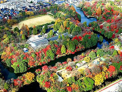 秋の終わり 高岡古城公園