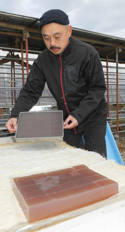5センチ角に切られた生寒天。一般的な棒状の形よりも製造期間を短縮できるという