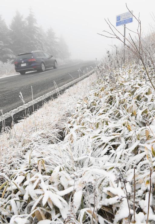 今季初の積雪で雪化粧した霧ケ峰高原=28日午後1時半、諏訪市