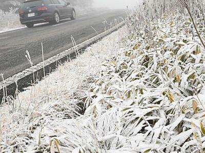 霧ケ峰高原に初雪 積雪・霧氷...一気に冬の装いに