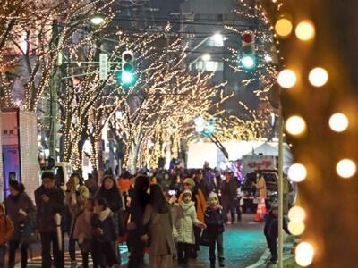冬空彩り温か 新潟で光のページェント