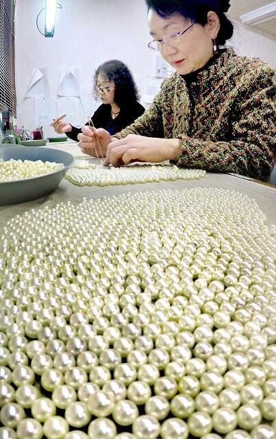 純白の輝きがまぶしい若狭パール=12月17日、福井県おおい町犬見の間宮真珠養殖場