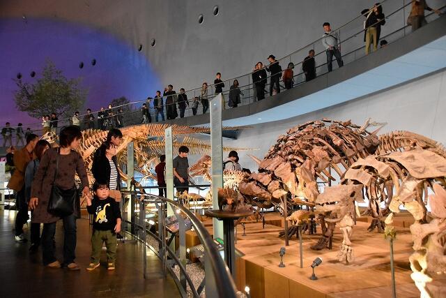 QRコード決済を導入した福井県立恐竜博物館