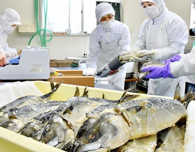 樽上げされた「鯖の熟れ鮨し」=12月21日、福井県勝山市北谷町北六呂師