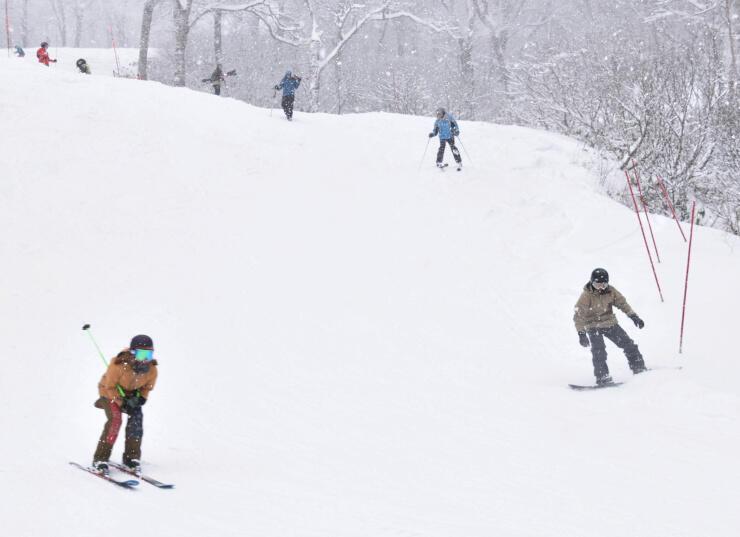 新雪で滑りを楽しむスキーヤーら