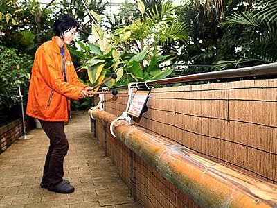 巨大な竹を打ち鳴らせ 県中央植物園が楽器製作