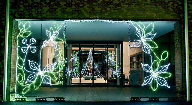 旧宮崎村の花「ヤマボウシ」をかたどったイルミネーション=福井県越前町宮崎コミュニティセンター