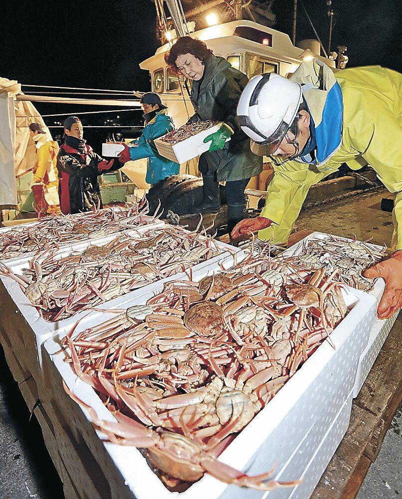 今季の漁が終了したコウバコガニの水揚げ作業=金沢港