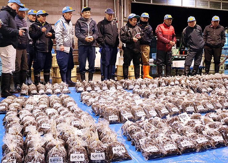 袋詰めされたナガラモの初競りが行われた氷見魚市場