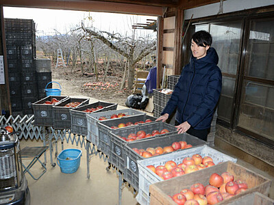 実家のリンゴ、販路をSNSで開拓 長野の被災農家長男
