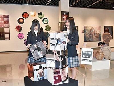 美術系学ぶ学生の卒業制作展 丹南高校生、集大成のアートずらり