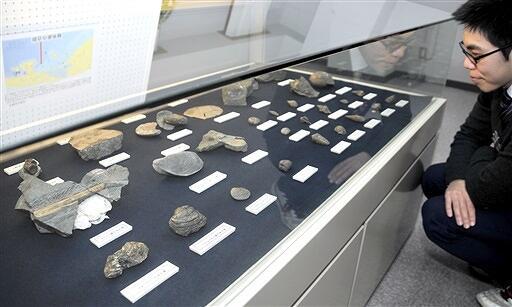 高浜町小黒飯で発掘された化石などが並ぶ企画展=福井県高浜町郷土資料館
