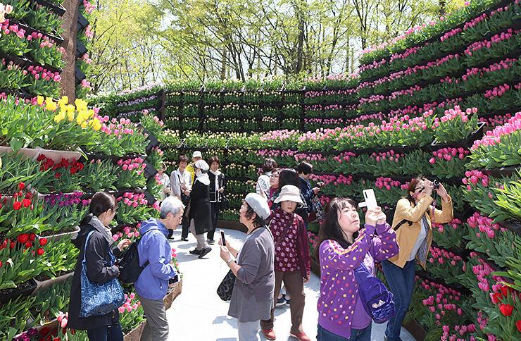 大勢の観光客でにぎわった昨年の「花の大谷」