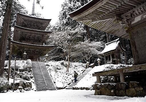 雪に覆われた明通寺境内。写真愛好家が訪れていた=2月6日、福井県小浜市門前