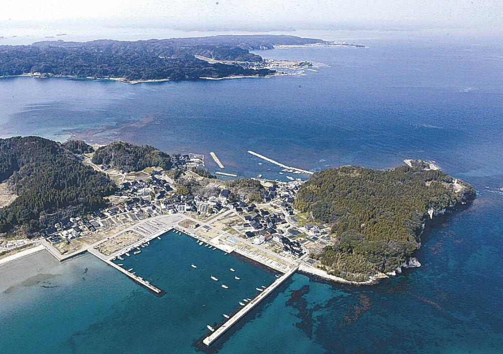 アカモクの生育が遅れている崎山半島沖=2013年、七尾市鵜浦町