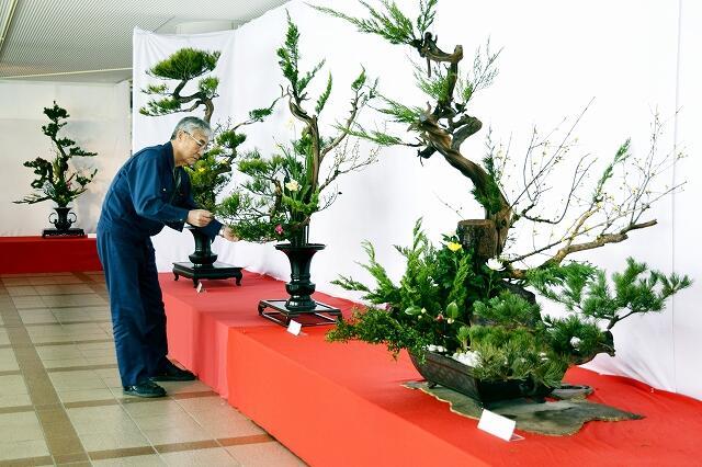 「上野古典立華」伝承展の作品を仕上げる会員=2月21日、福井県南越前町南条文化会館
