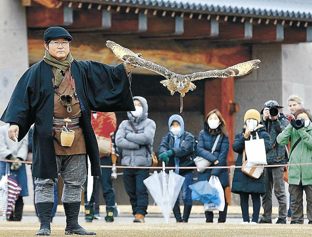 放鷹術を実演する鷹匠=金沢城公園三の丸広場