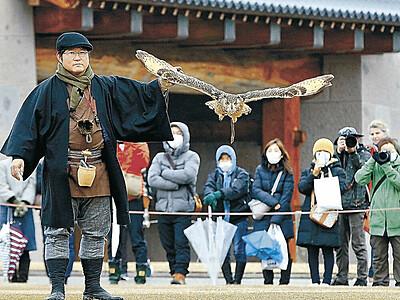 タカの技に歓声 金沢城公園で放鷹