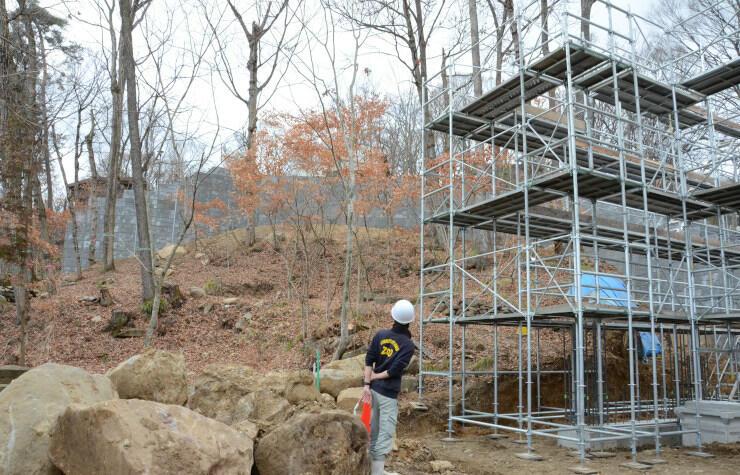 「オランウータンの森」の整備が進む雑木林。隣では屋内展示施設の建設も進む