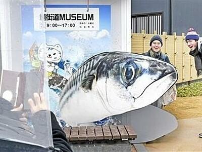小浜市鯖街道ミュージアムが開館 サバの魅力どっぷり 福井県
