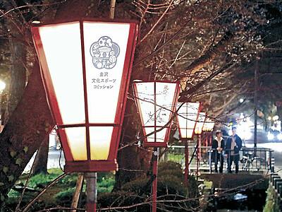 花見ぼんぼり、淡い明かり 金沢・広坂通り、83基点灯