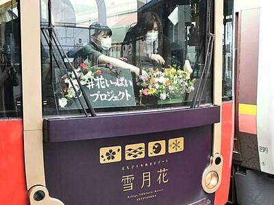 県産花が彩る春の旅 トキ鉄、「雪月花」でPR