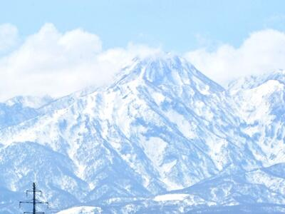 「跳ね馬」俊足 妙高山