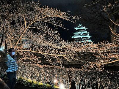 松本城の花明かり、さらに 「光の回廊」始まる